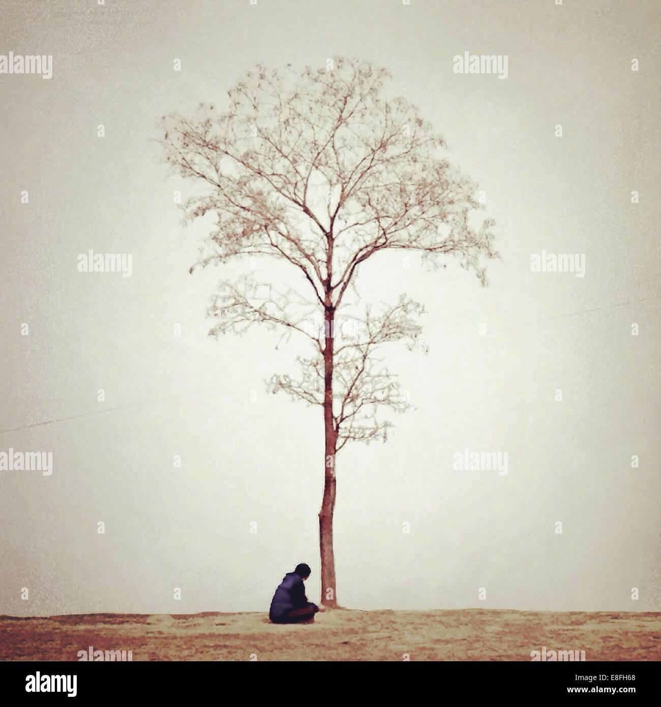 Frau sitzt unter Baum Stockbild