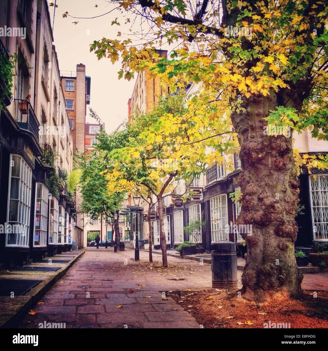 Vereinigtes Königreich, London, größere Bloomsbury, London St. Pancras, Woburn Place Stockbild