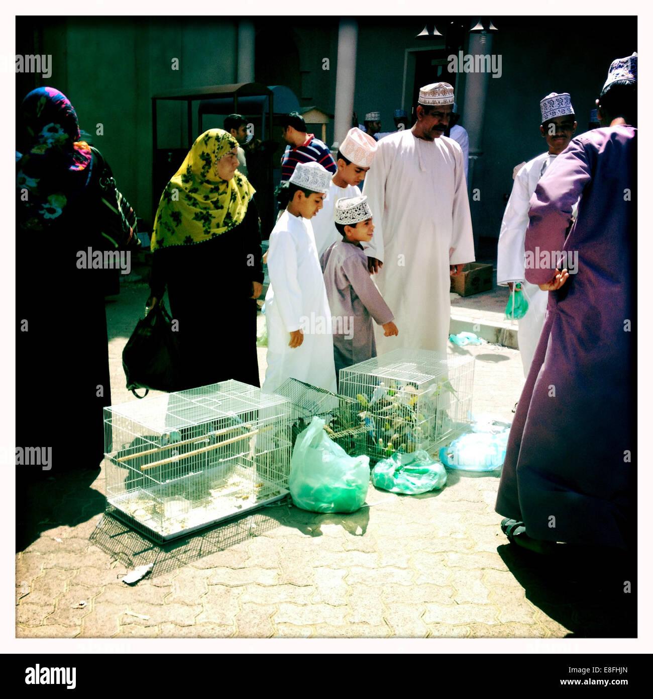 Oman, Nizwa, lokale Vogelmarkt Stockbild