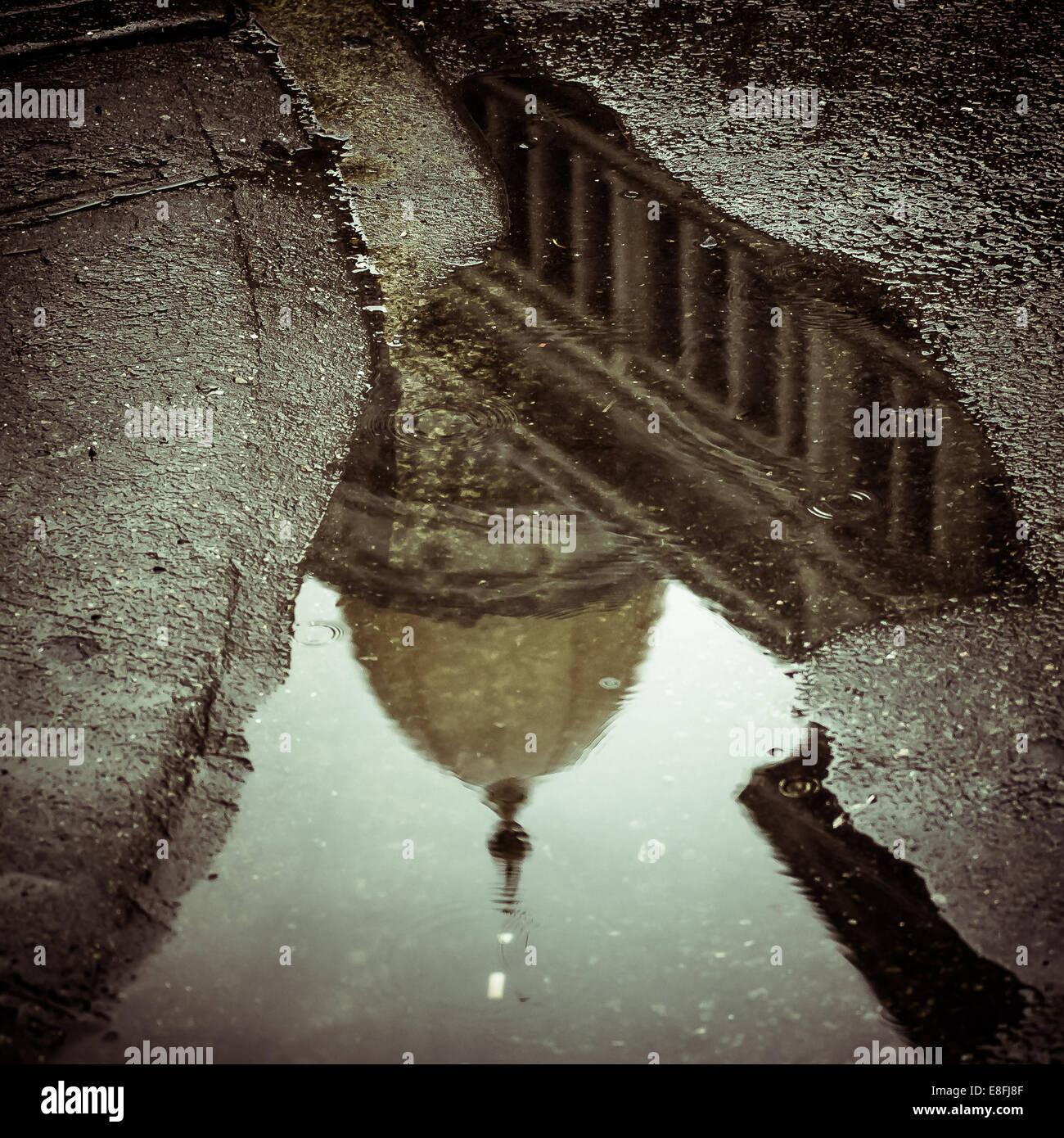 USA, New York State, New York City Dome spiegelt sich in der Pfütze Stockbild