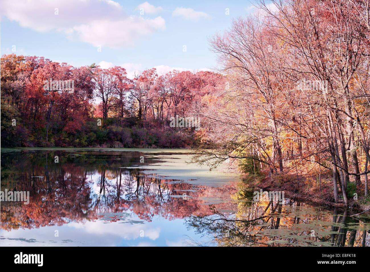 USA, Illinois, LaSalle County, Starved Rock, bunten Herbst Stockbild