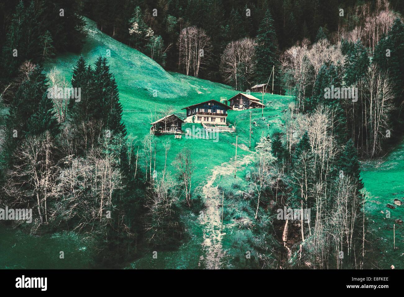 Schweiz, Grindelwald, Alpen-Häuser Stockbild