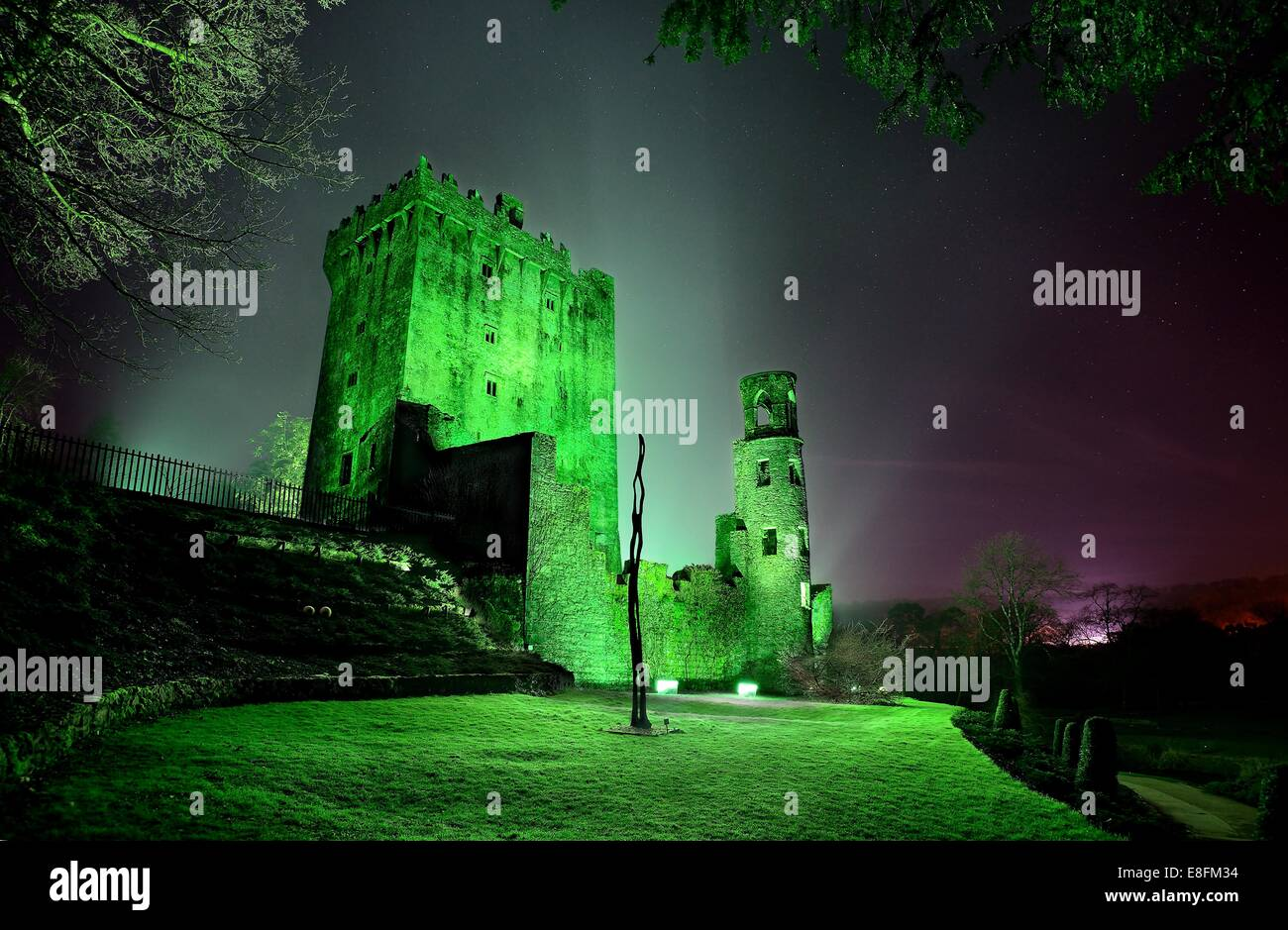 Irland, Munster, County Cork, Blarney, Blarney Castle am St. Patricks day Stockbild