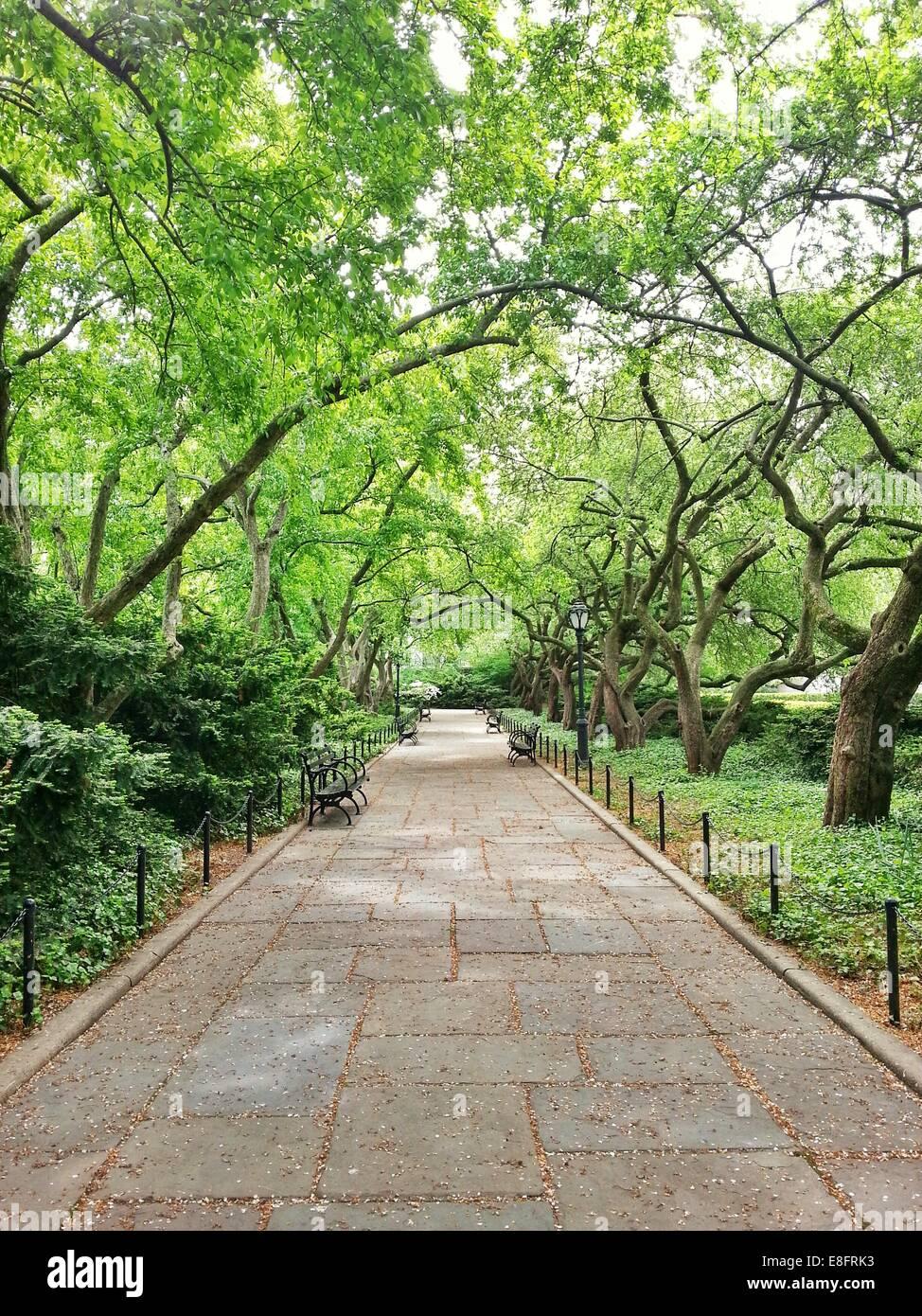USA, New York State, New York City, Weg im Central Park Stockbild