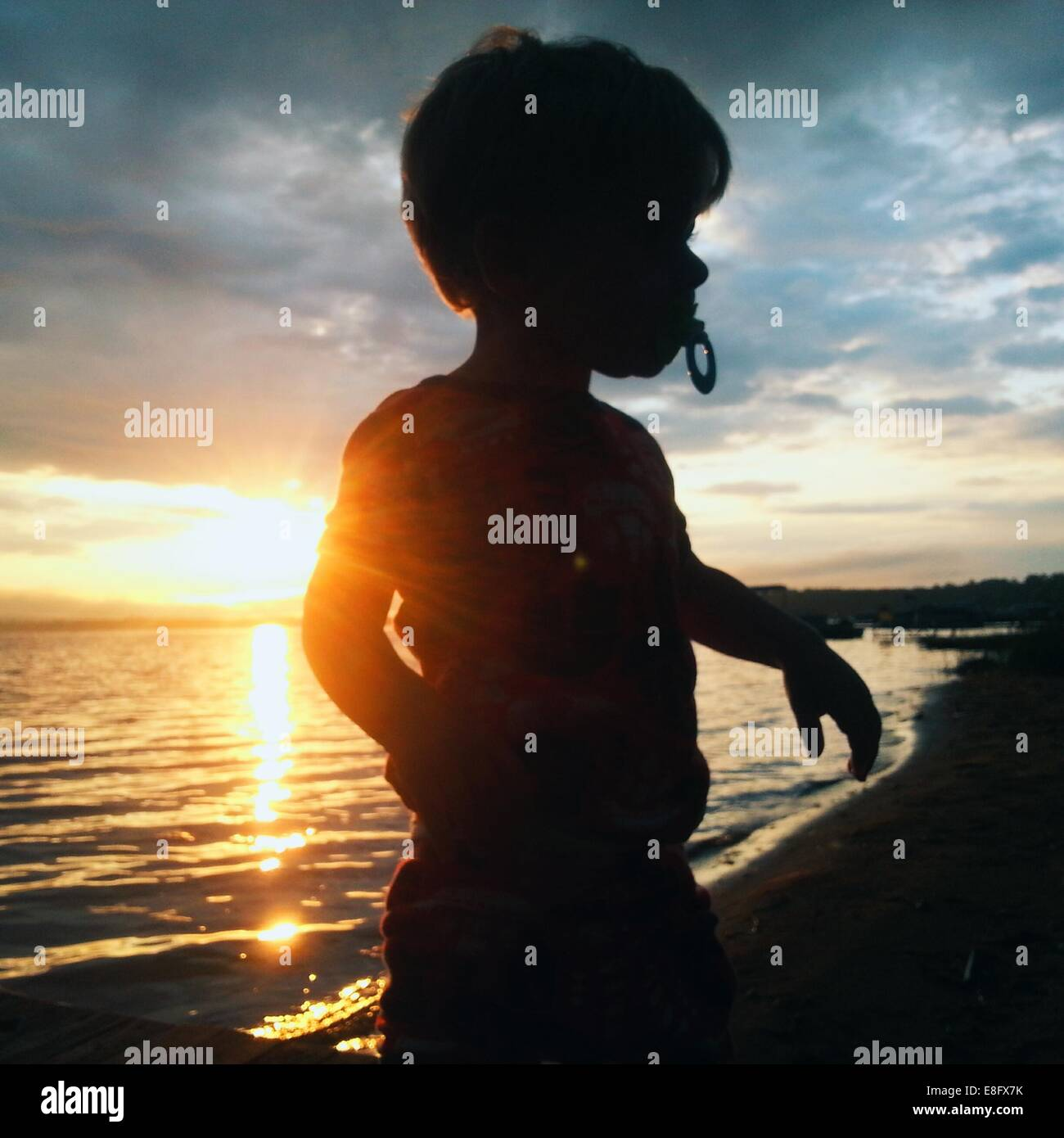 USA, Michigan, Missaukee County, Lake City, Silhouetted junge spielt am Strand bei Sonnenaufgang Stockbild
