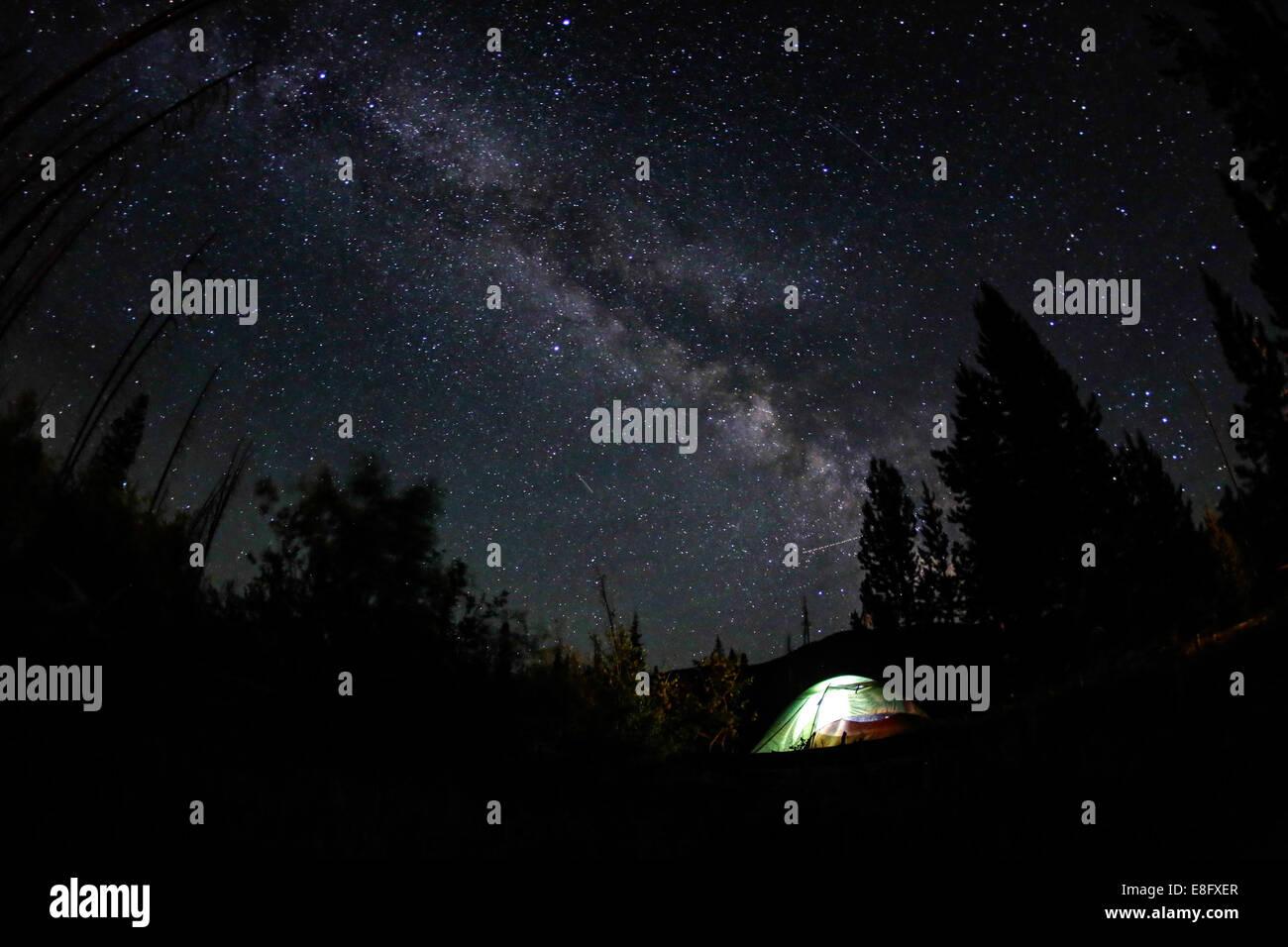 Camping in der Nacht Stockbild