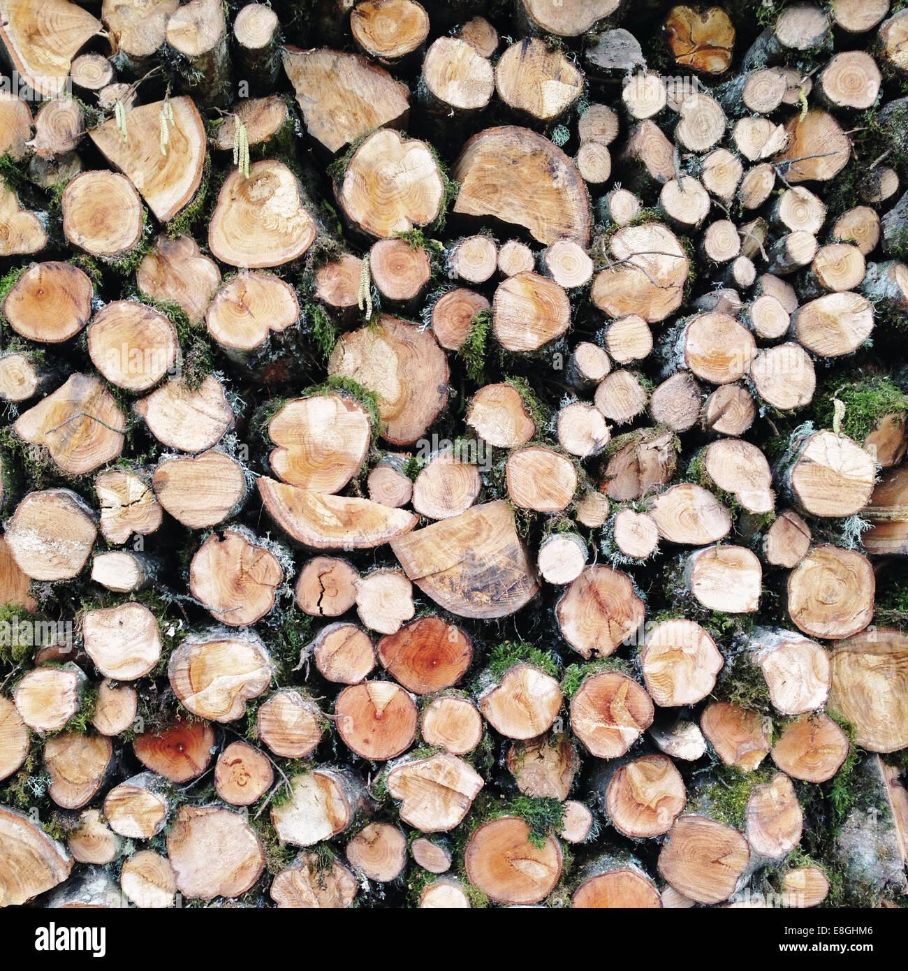 Gestapelte Holz Stockbild