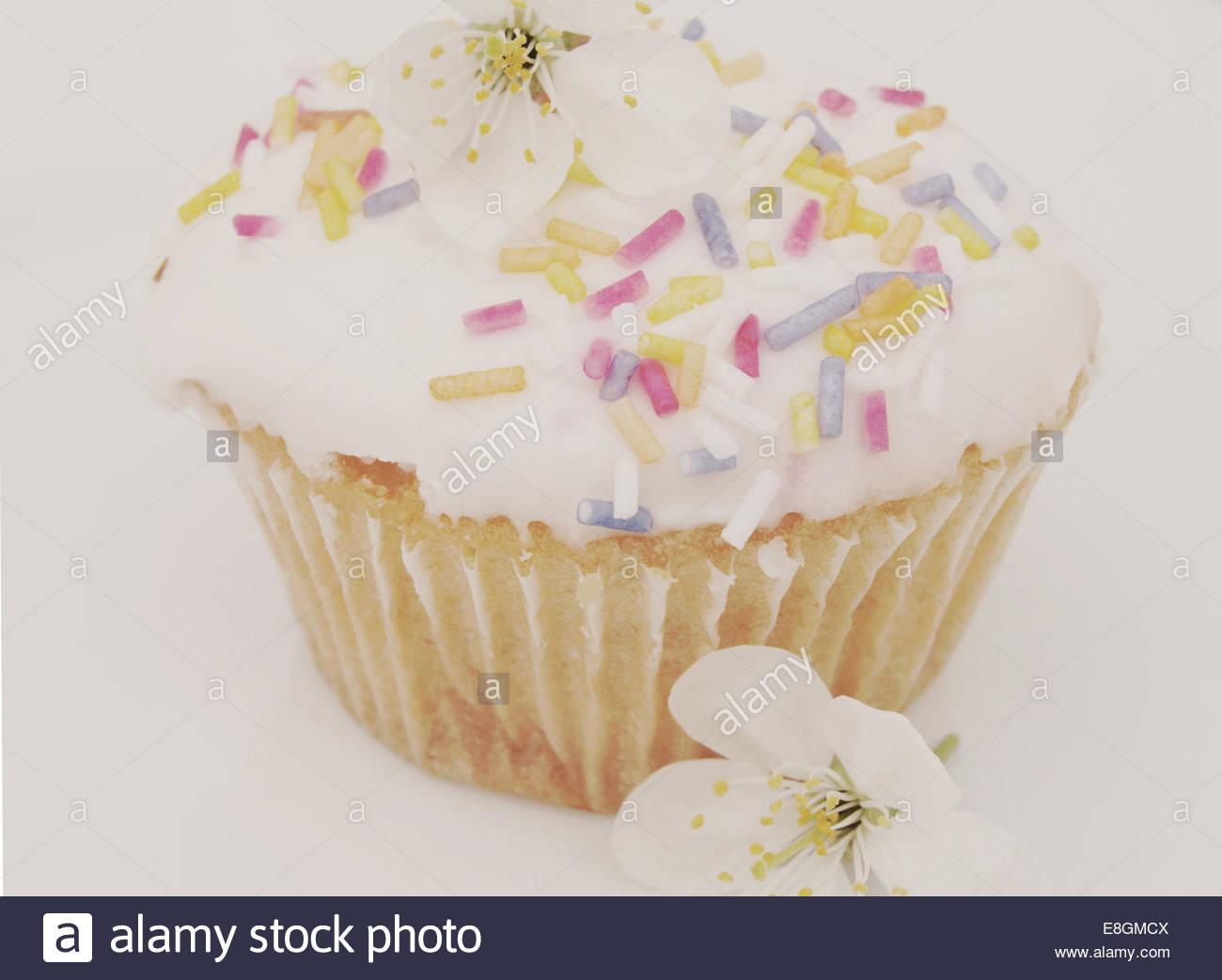 Ansicht von Cupcake auf weißem Hintergrund Stockbild