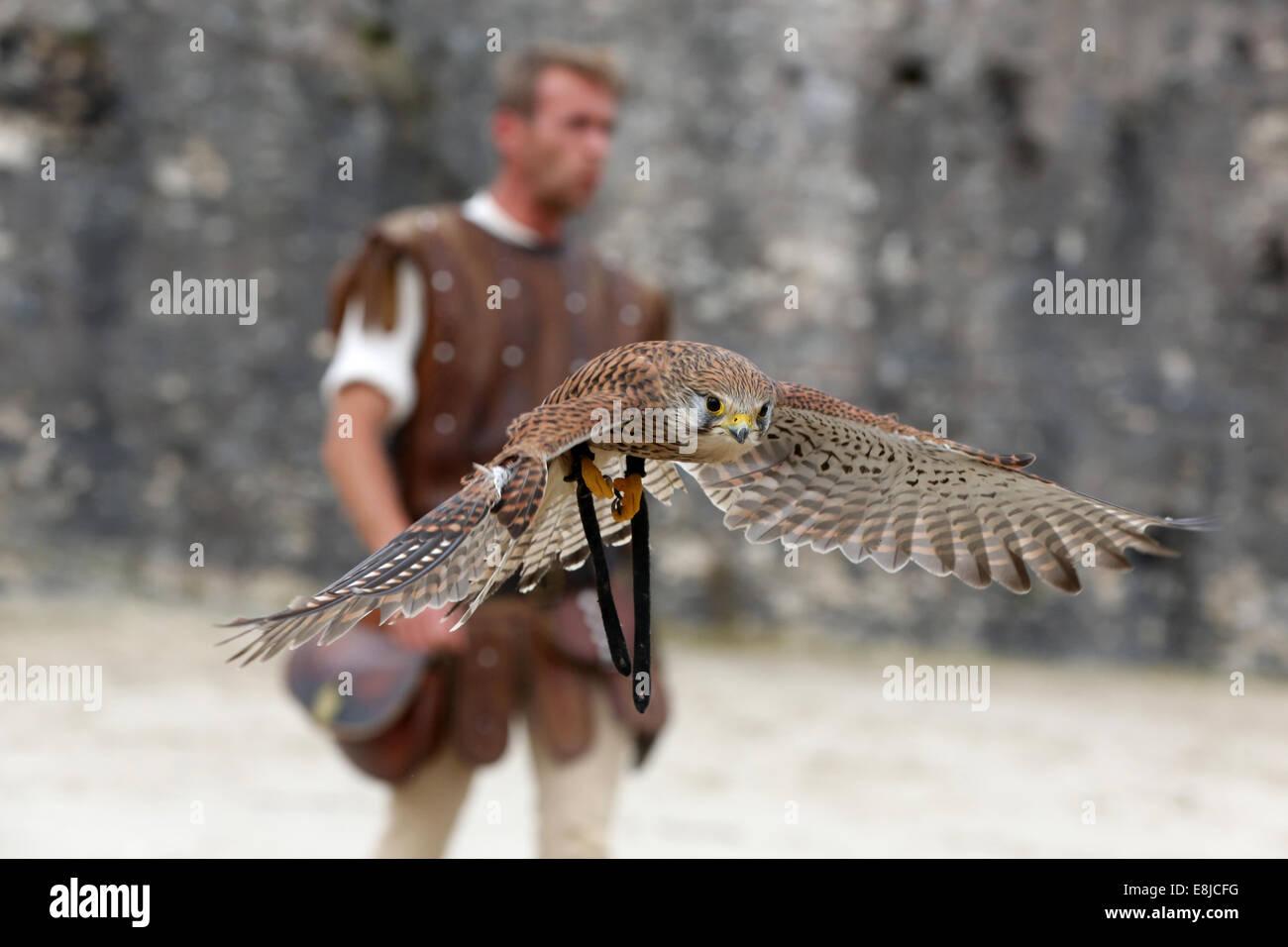 Die Legende der Ritter. Das mittelalterliche Festival von Provins. Stockbild