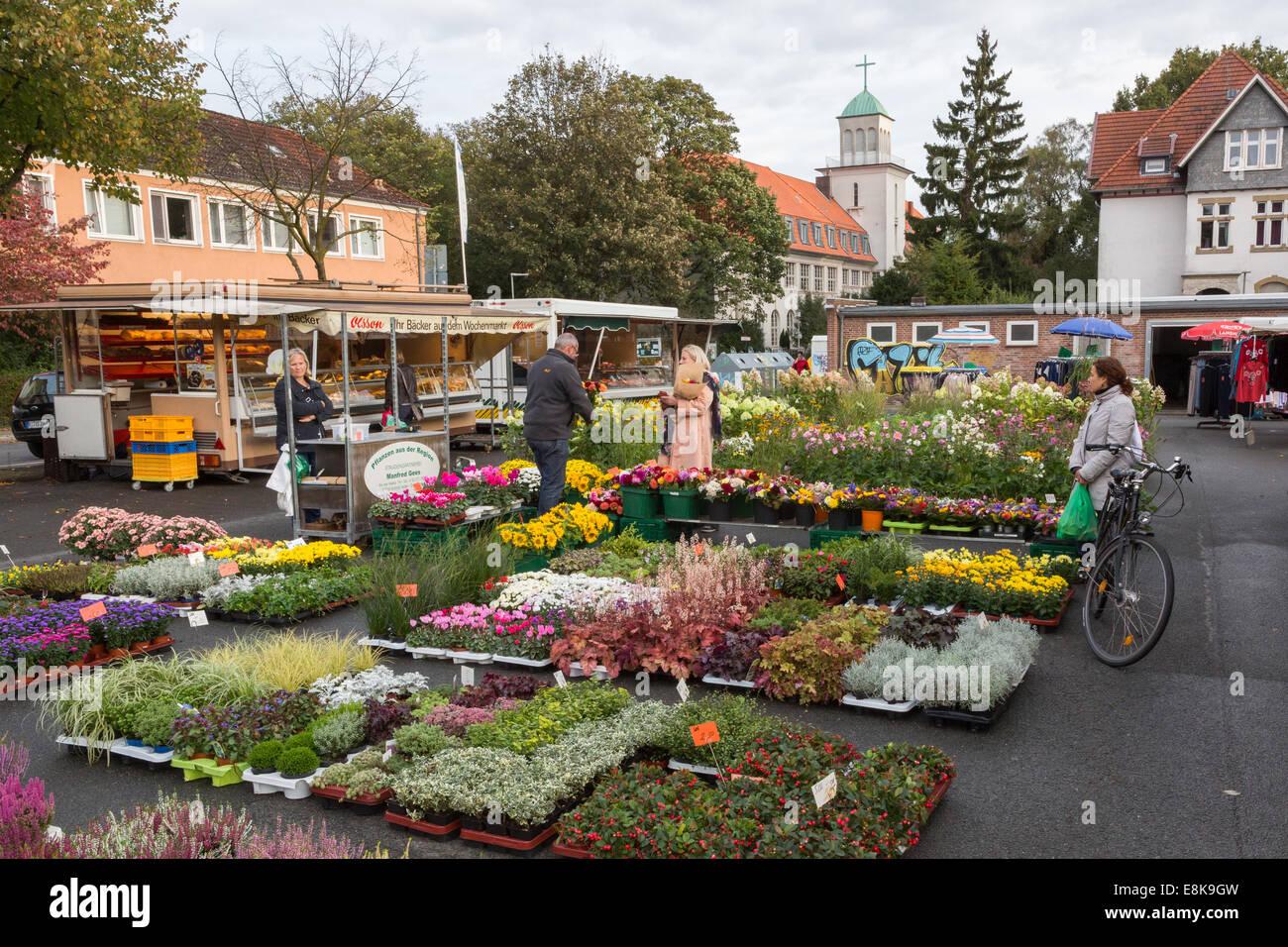 Blumen Bielefeld kunden auf einen blumen und stand auf dem jakobuskirchplatz markt