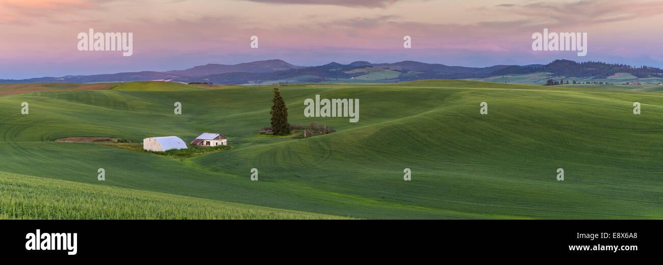 Whitman County, WA: Sonnenuntergang über die Hügel der Palouse region Stockbild