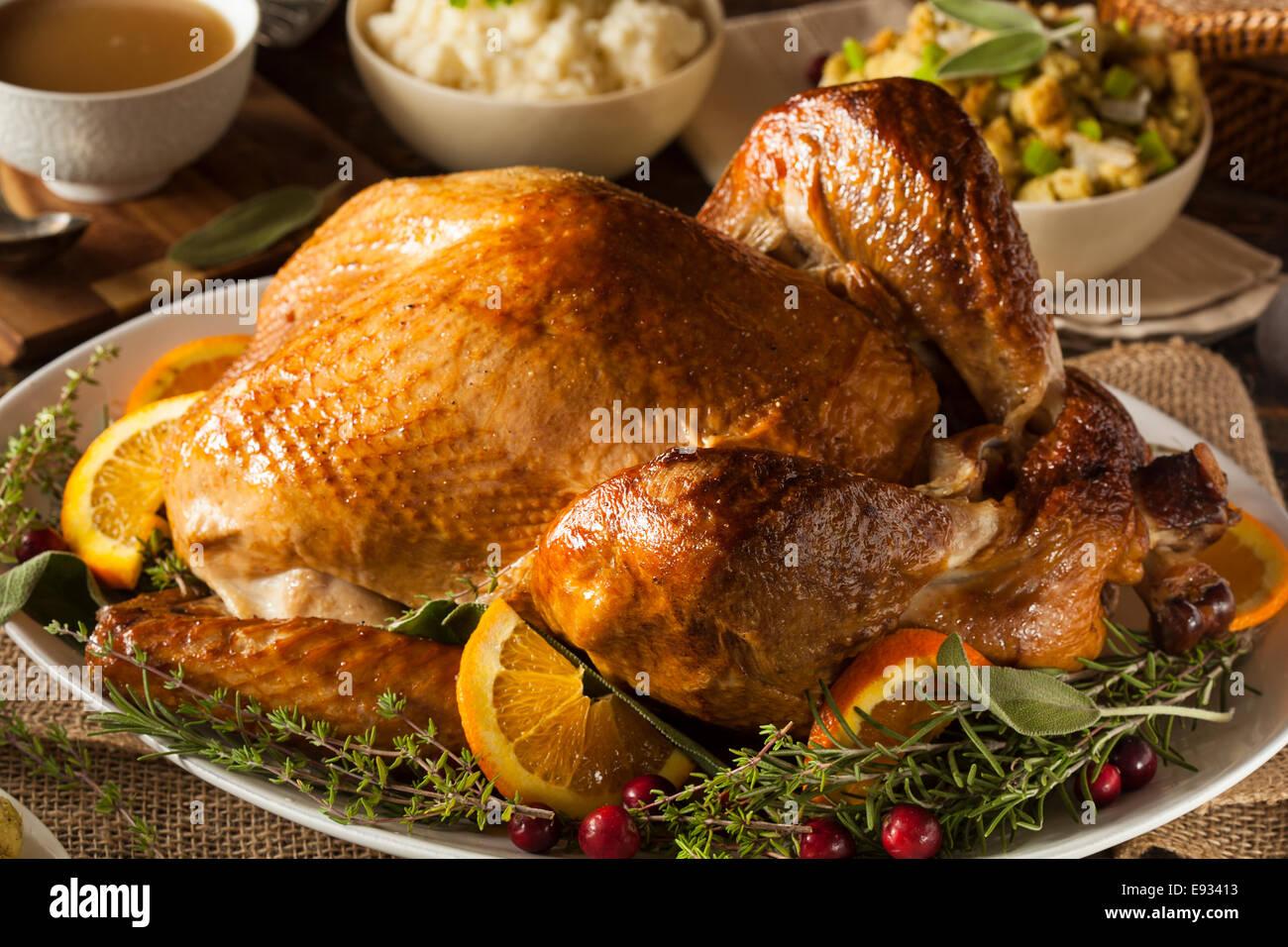 Erfreut Thanksgiving Truthahn Malbuch Ideen - Malvorlagen Von Tieren ...