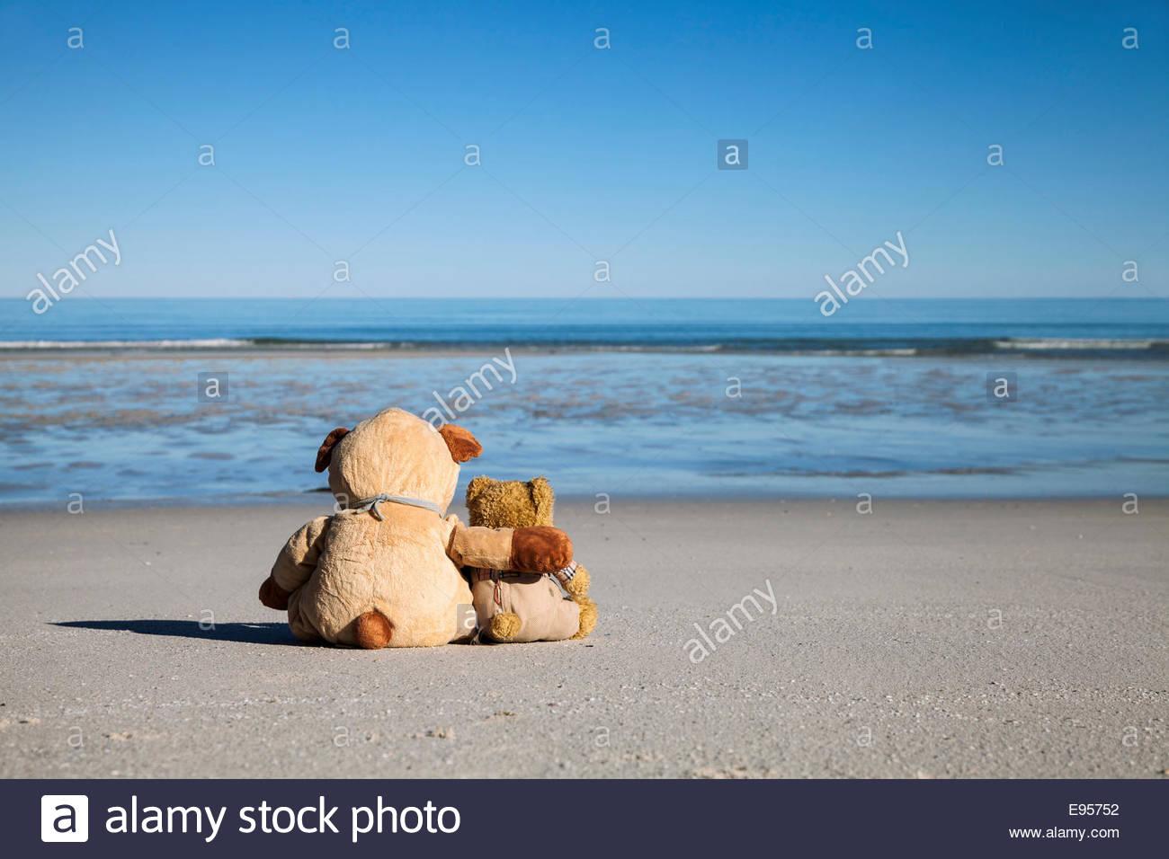 come amici Bears si Teddy e Due abbracciano nostalgia e2HIEDW9Y