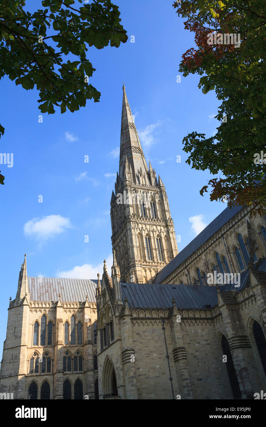 Nordfassade der Kathedrale von Salisbury und spire Stockbild