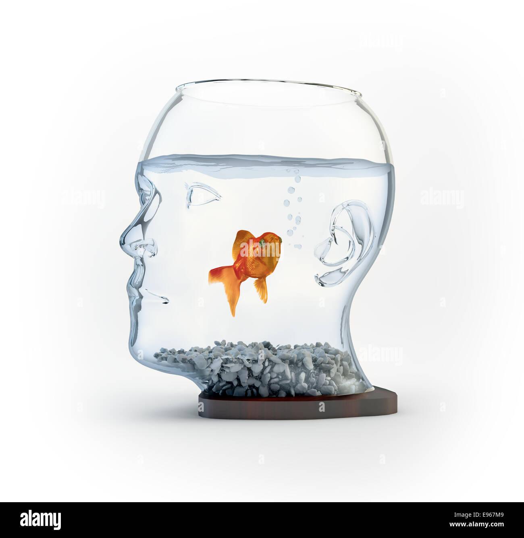 Ein Goldfischglas, geformt wie ein Kopf Stockbild