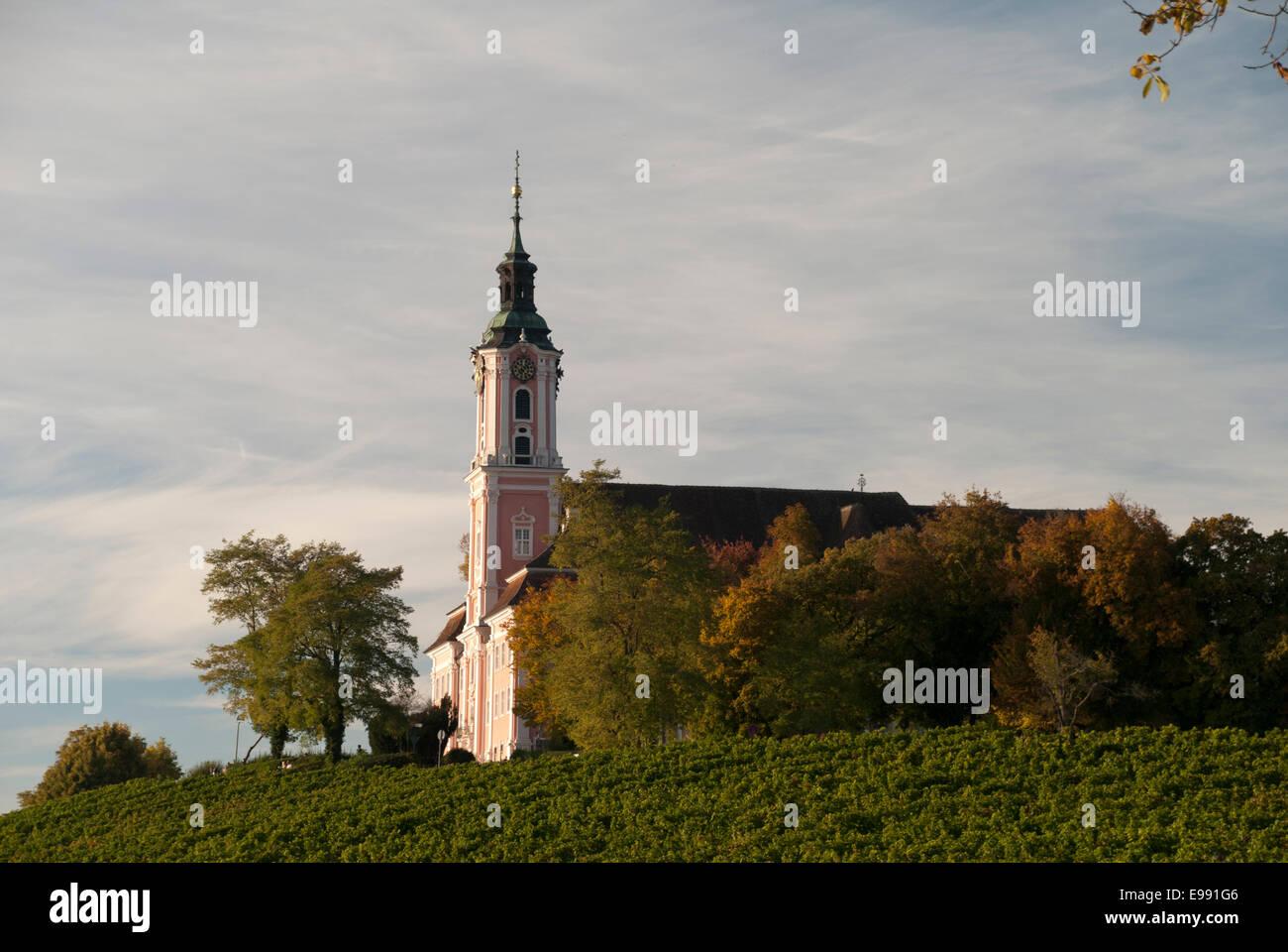 Kloster Birnau - in der Mitte des Vine - Inmitten von Reben Stockbild
