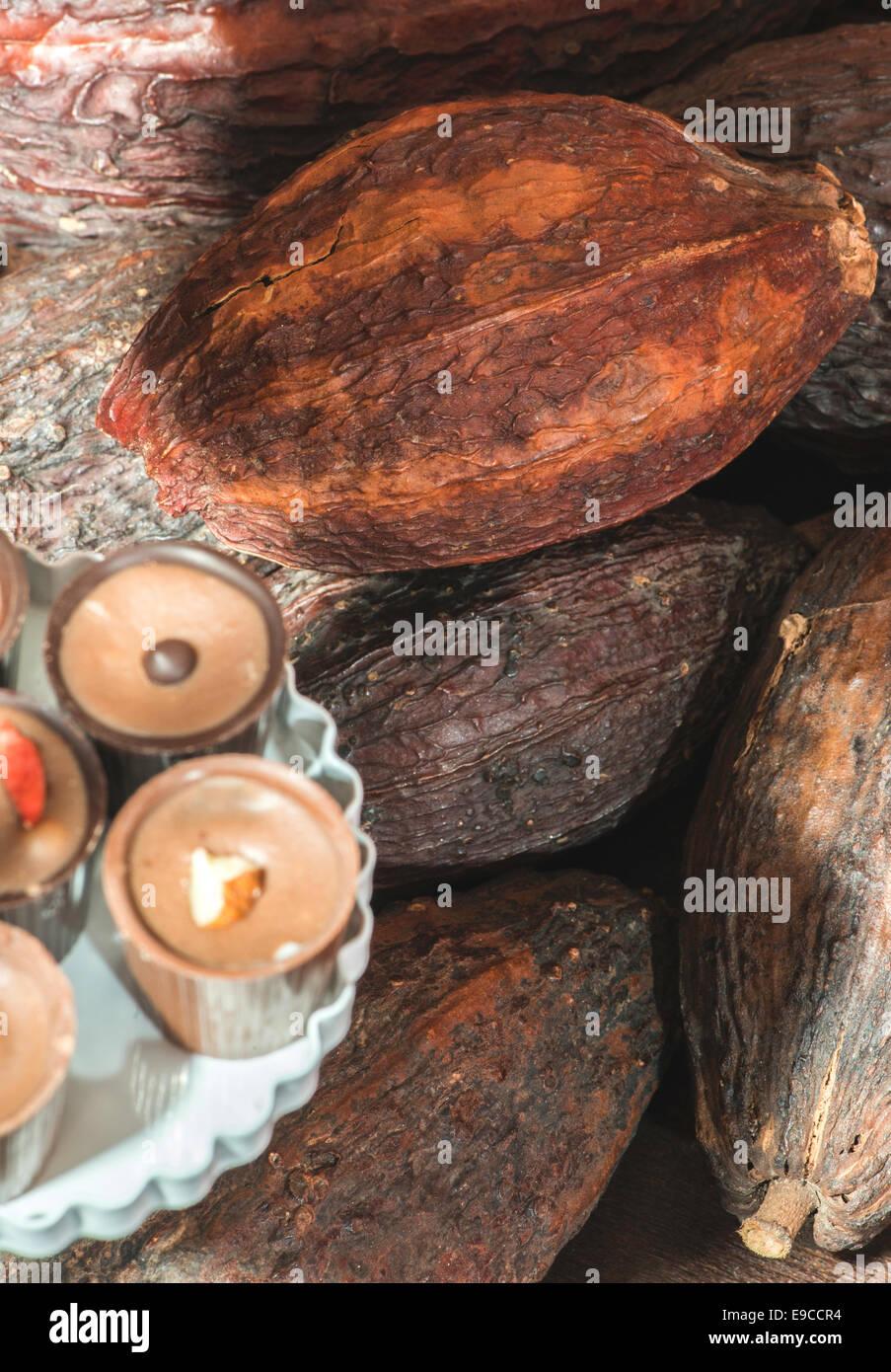 Kakaofrüchte und bonbons Stockbild
