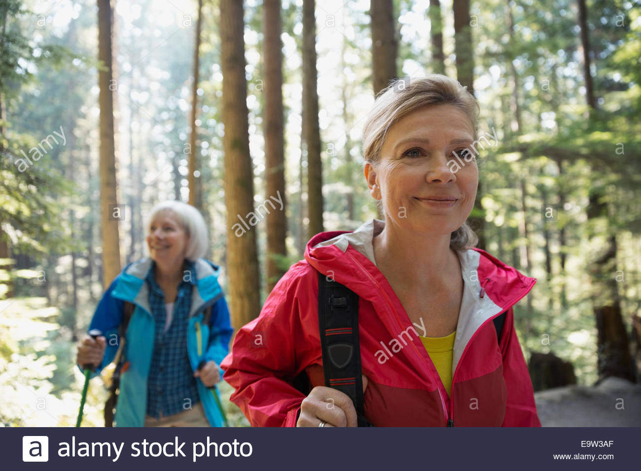 Lächelnde Frauen Wandern im sonnigen Wald Stockbild