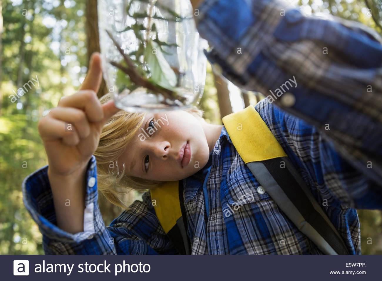 Neugieriger Junge in Wäldern untersuchen Pflanzen in Glas Stockbild