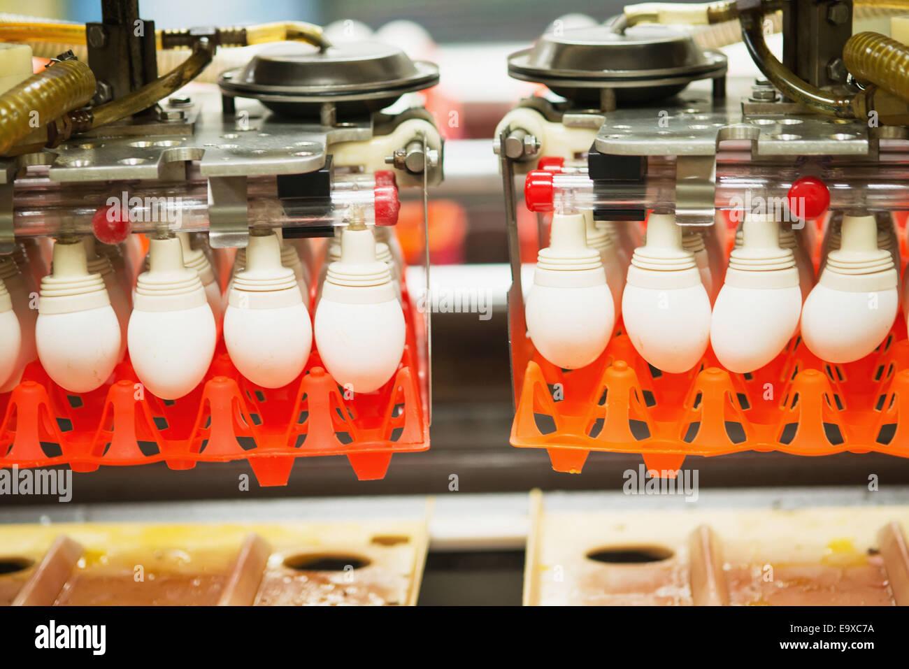 Eiern auf einem konventionellen Produktion kommerzieller Ei Bauernhof sortiert; Hampstead, Maryland, Vereinigte Stockbild