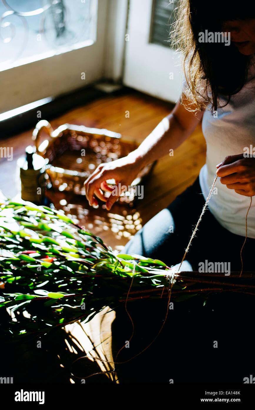 Frau arbeitet auf Pflanze Stecklinge Stockbild