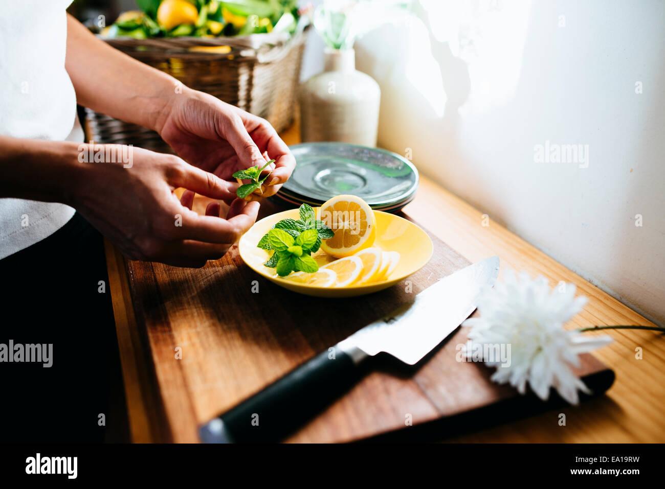 Frau, vorbereiten, Zitrone und Minze Stockbild