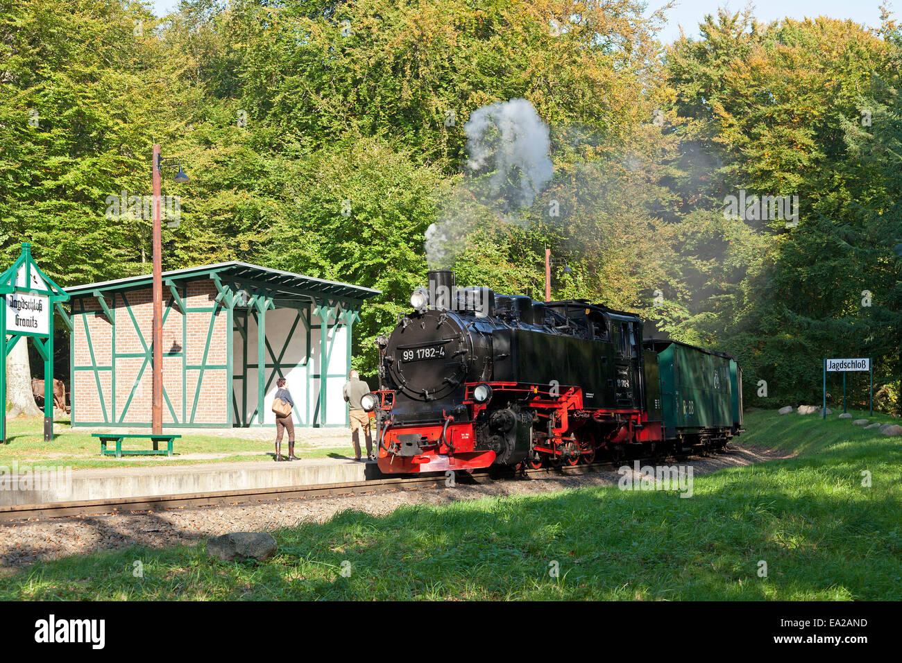 """Dampfzug """"Rasender Roland"""" am Bahnhof von Jagdschloss Granitz, Insel Rügen, Mecklenburg-West Pomerania, Deutschland Stockfoto"""