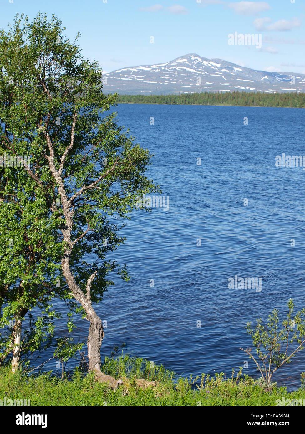 Bergregion zwischen Norwegen Schweden Stockbild