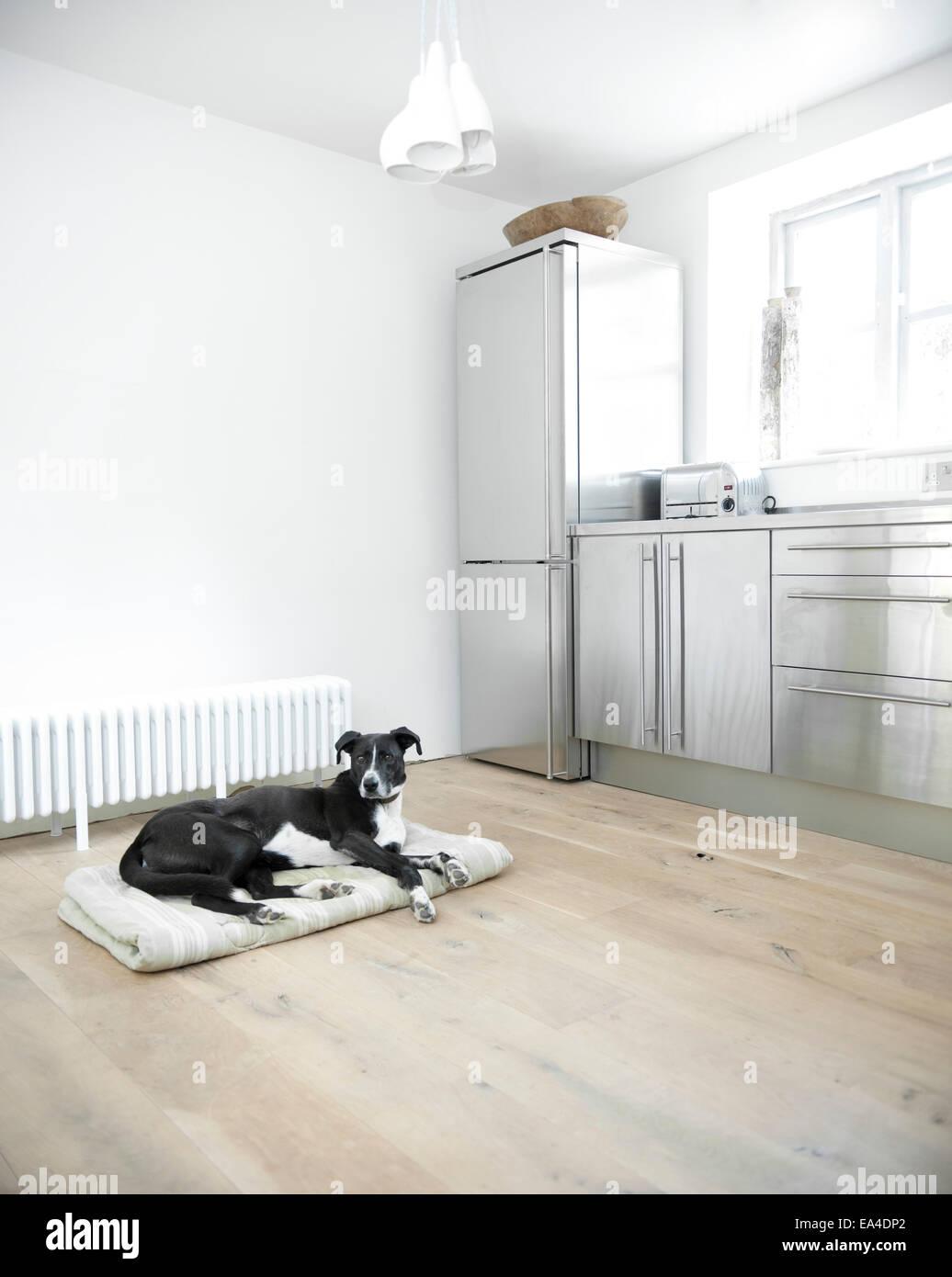 Wunderbar Hütte Küche Vorhänge Galerie - Küchen Ideen Modern ...