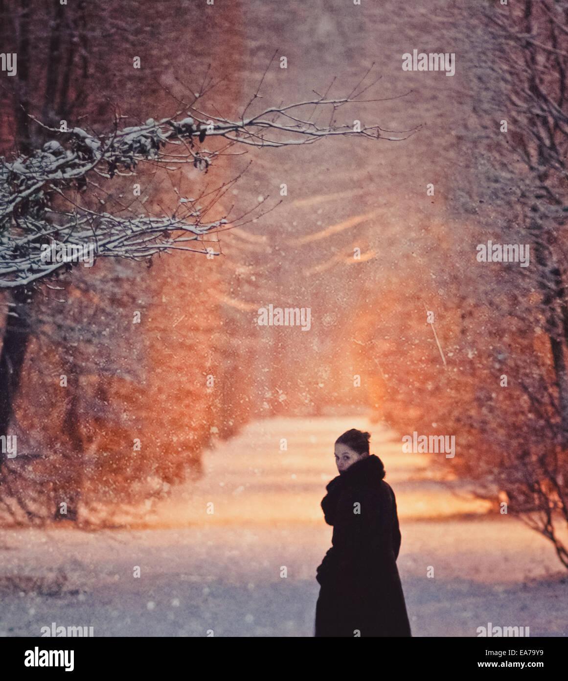 ein Spaziergang in einem verschneiten park Stockfoto