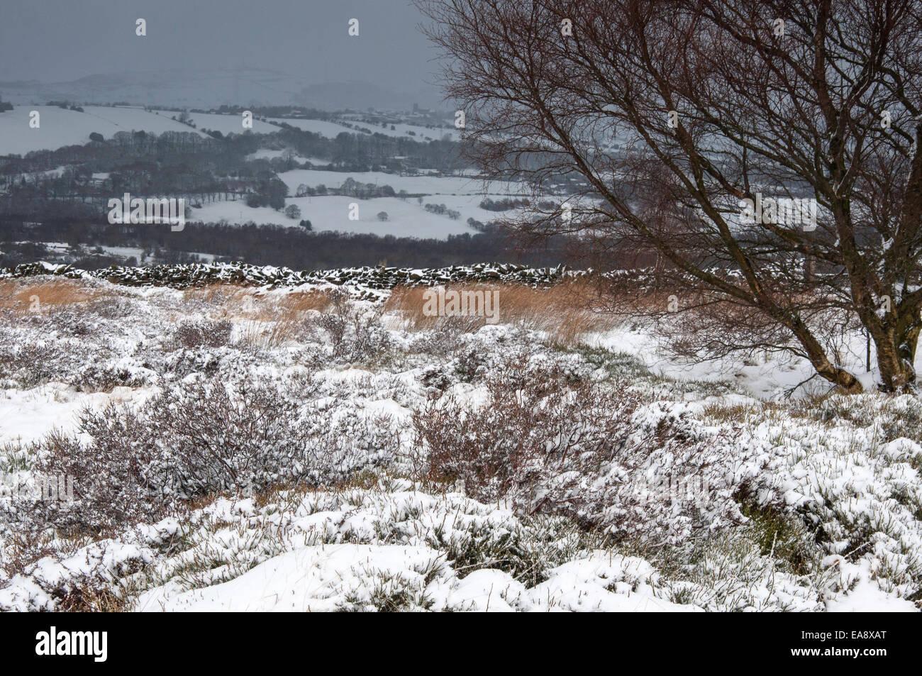 Verschneite Moorlandschaft mit dunklen Wolken über Kopf mit Schnee. Stockbild