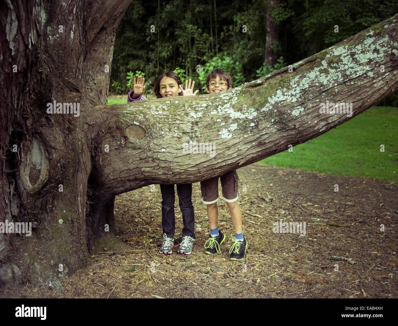 Jungen und Mädchen verstecken sich hinter Ast Stockbild