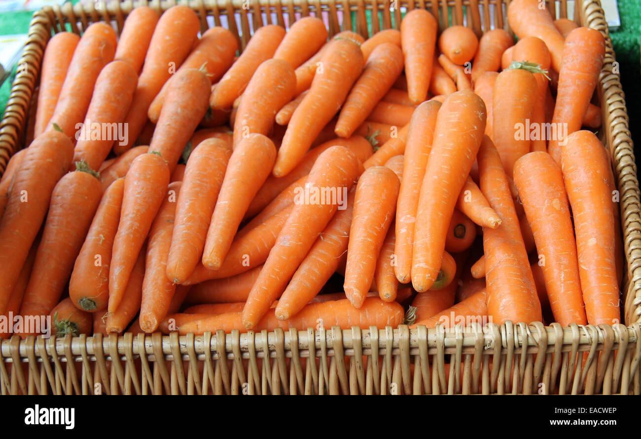Ein Korb mit frisch geernteten Gemüse Karotten. Stockbild