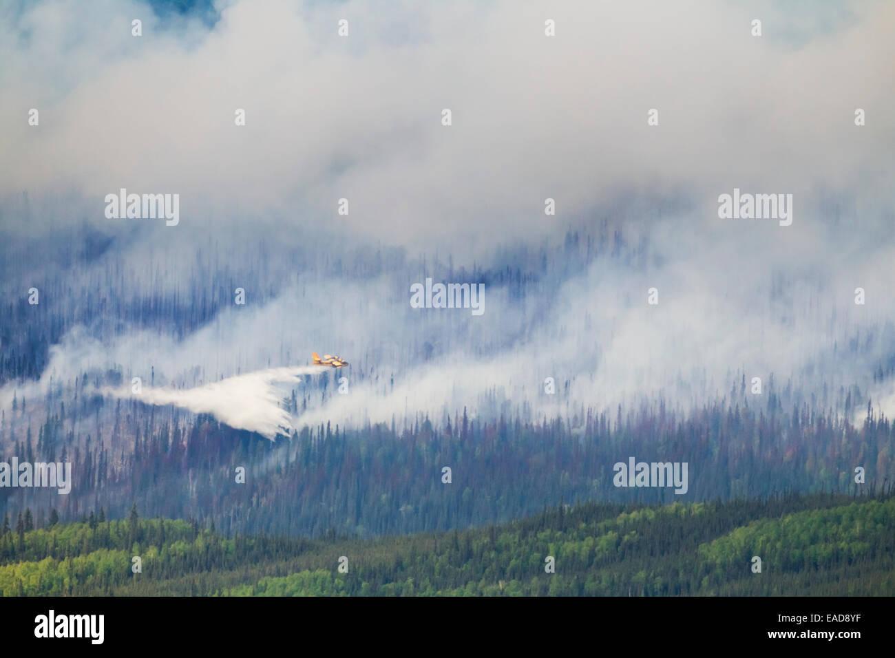 Rauch, Flugzeug, Brandbekämpfung, Waldbrand Stockbild