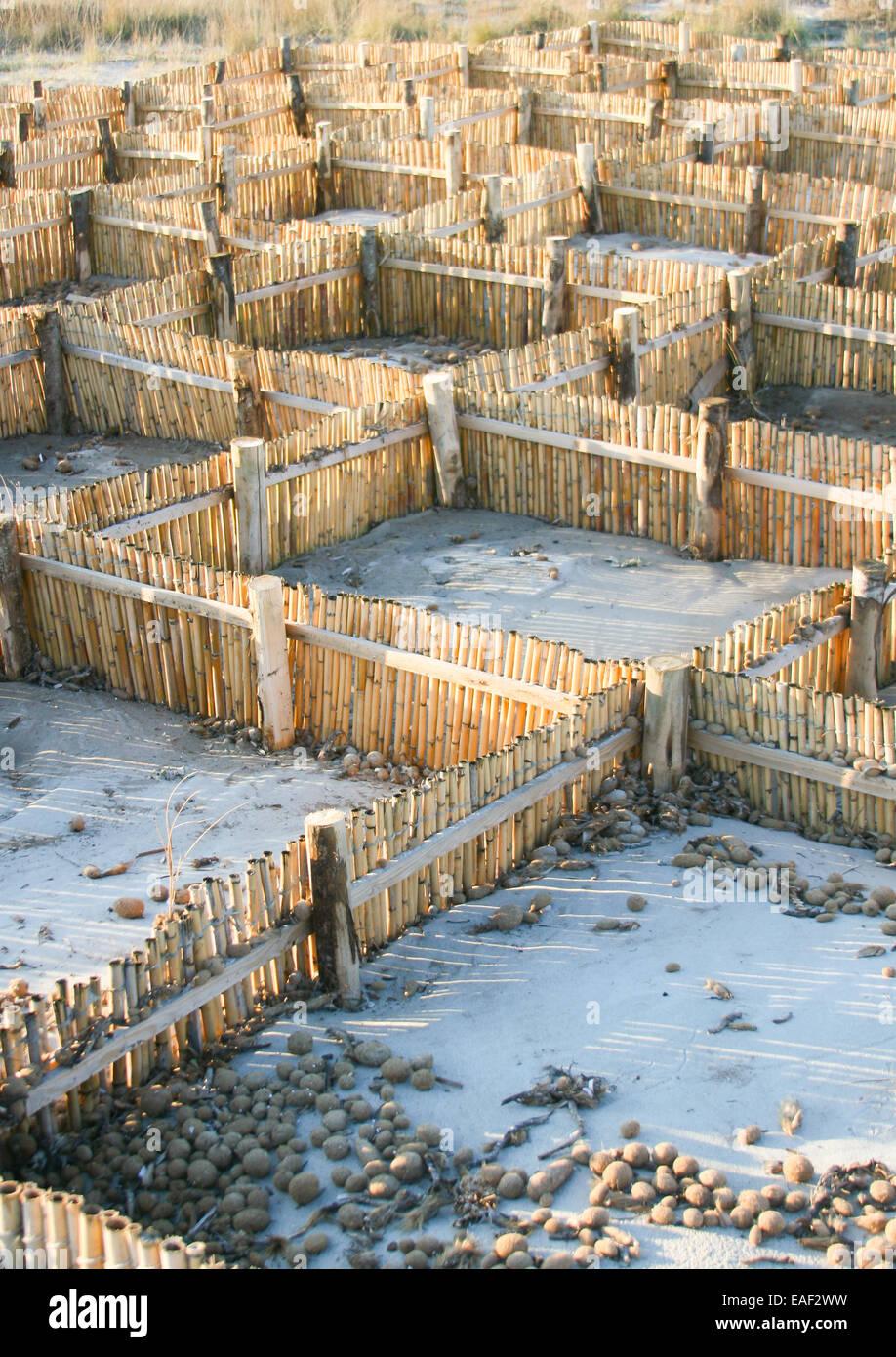 Barriere für Sand. Nützlich gegen Erosion der Küste Stockfoto