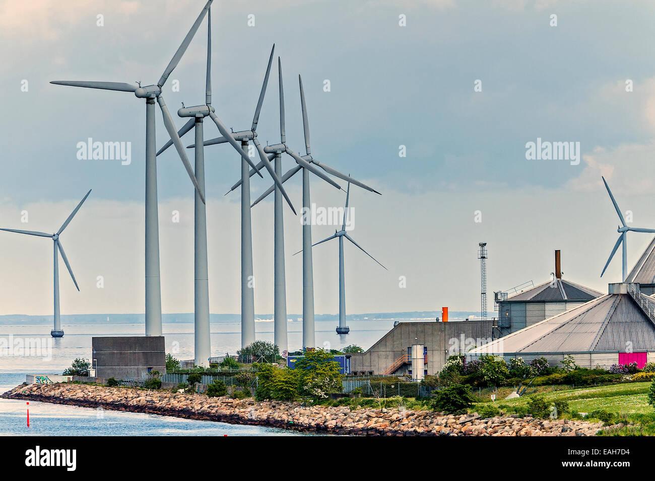 Wind-Generator-Farm-Kopenhagen-Dänemark Stockbild