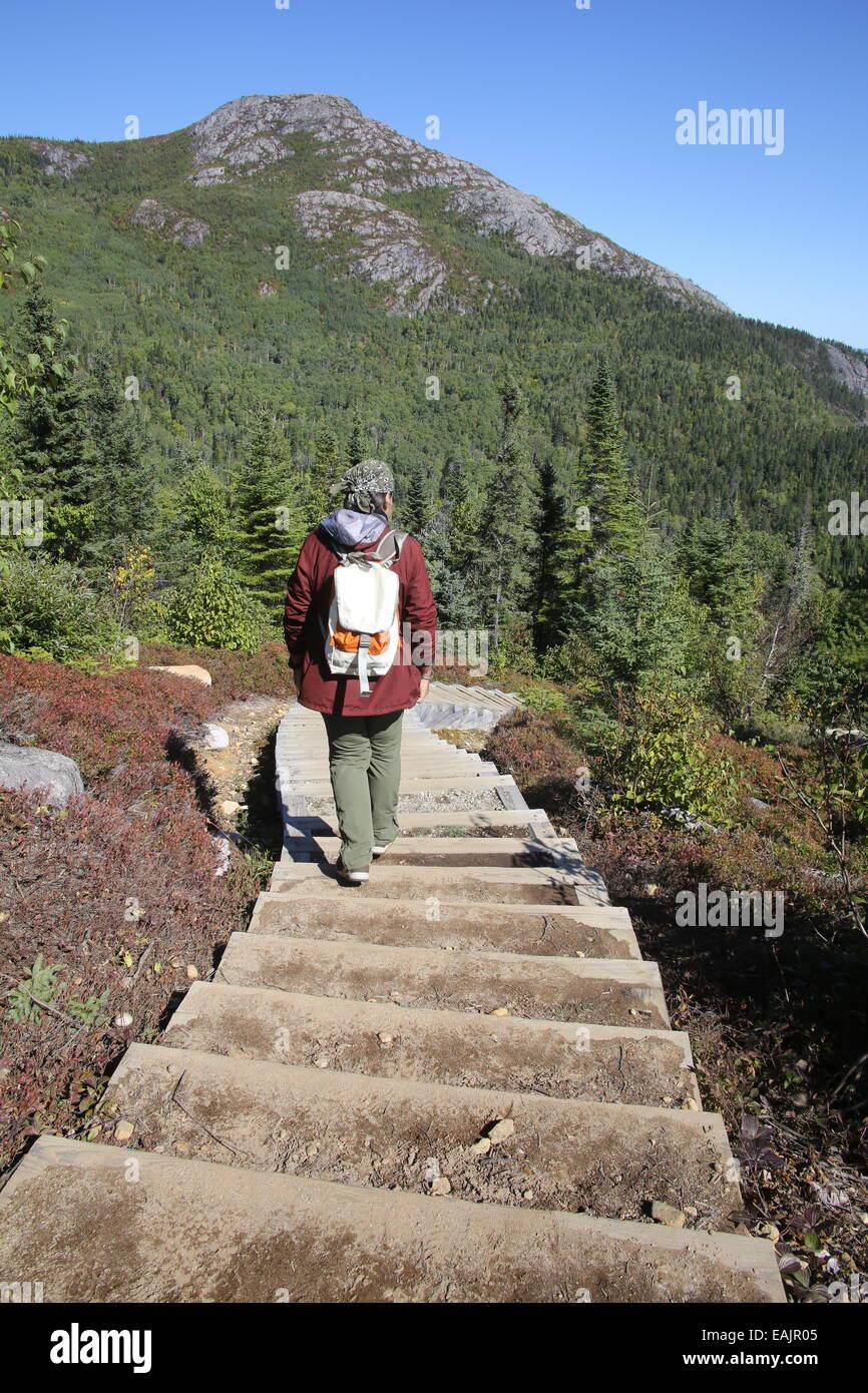 Wandern im Parc National des Grands Jardins, Quebec City, Kanada ...