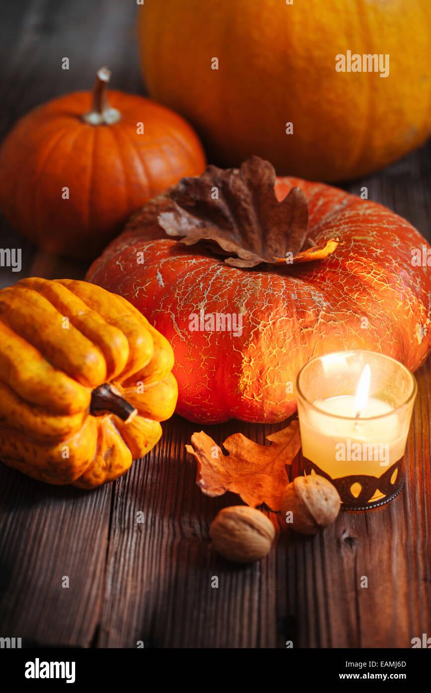 Im Herbst Kürbisse Stockbild