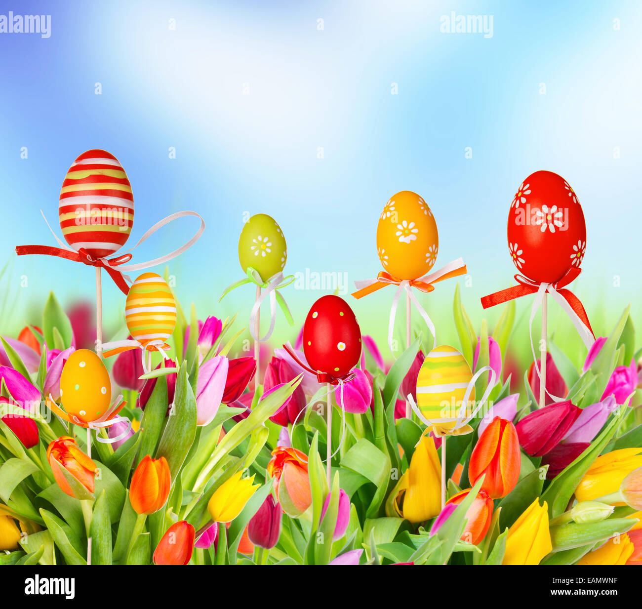 Colorful Spring Flowers Bouquet Butterflies Stockfotos Colorful