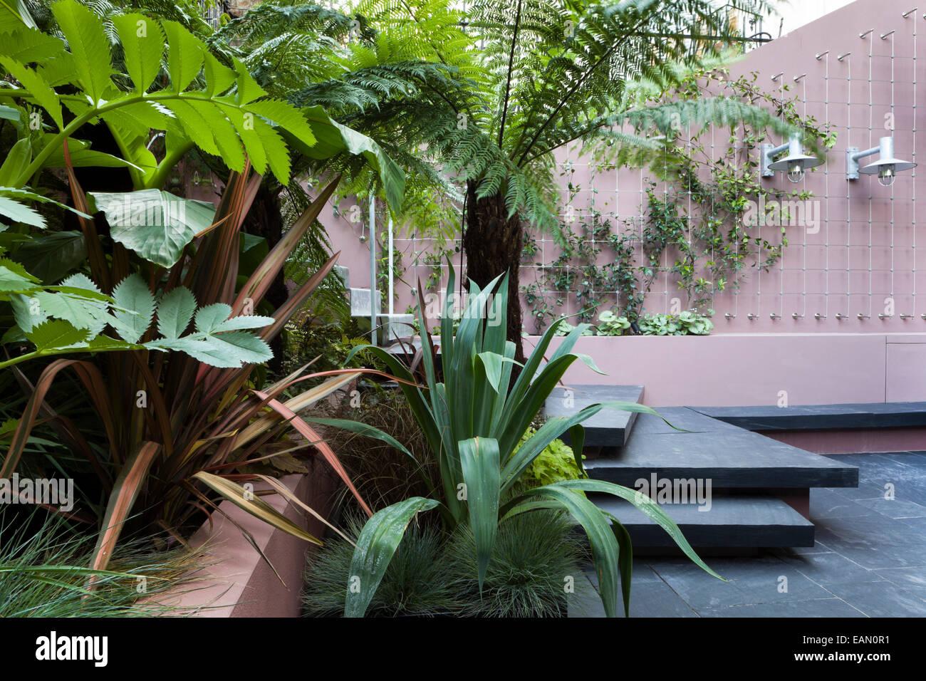 Patio Garten Im Untergeschoss Zeigt Abschnitt Der Hochbeet Und