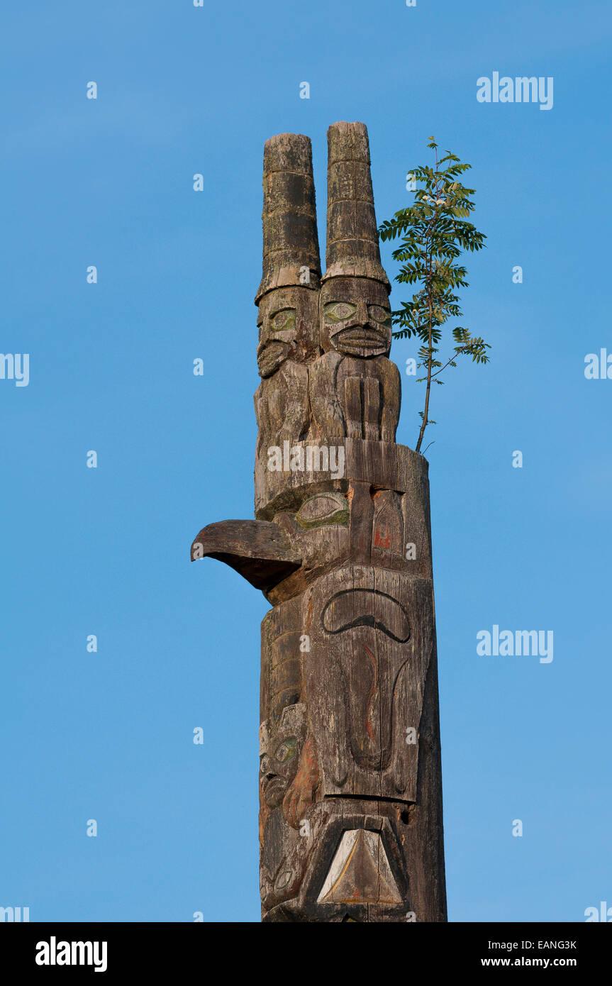 Eberesche Baum wächst an Spitze der Totempfahl, Cates Park, bekannten, lokalen Tsleil-Waututh First Nation Stockbild