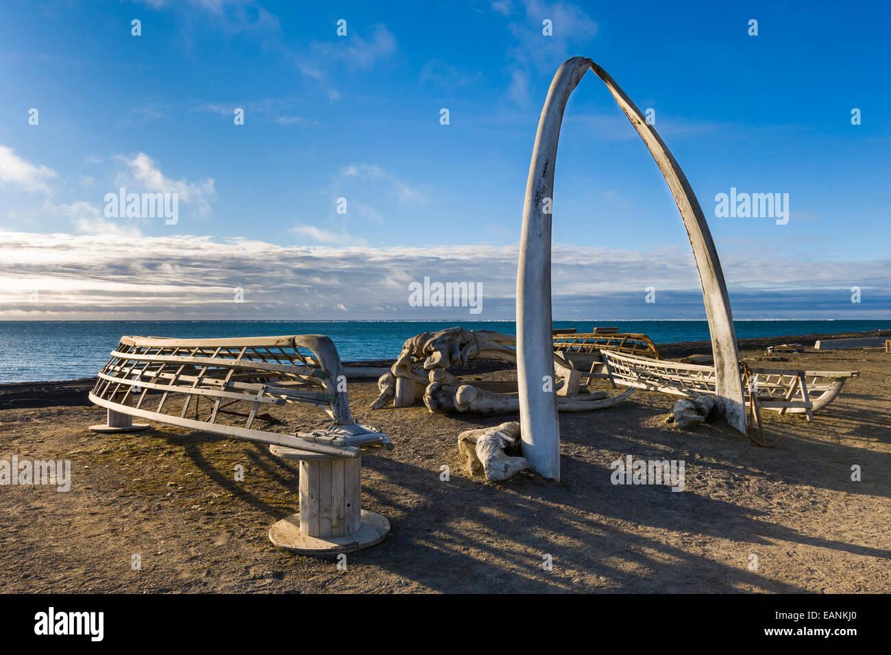 Bowhead Whale Kiefer Knochen Bogen mit hölzernen Umiak Frames (Wal ...