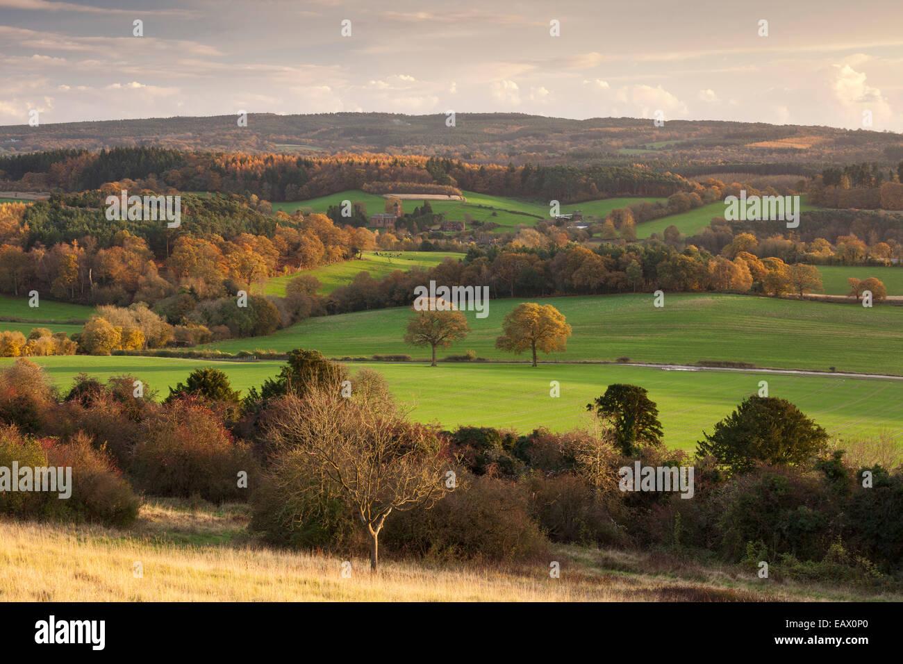 Blick über Albury und Surrey Hills von Newlands Ecke auf den North Downs. Surrey, England, Vereinigtes Königreich Stockbild