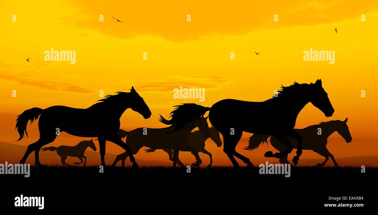 Illustration der Pferde Silhouetten auf Sonnenuntergang Hintergrund ausgeführt Stockbild