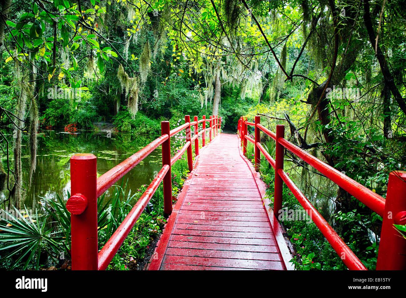 Kleine rote Brücke über einen Teich, Magnolia Plantation, Charleston, South Carolina Stockbild