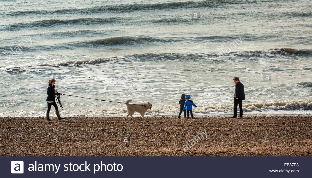 Strand von Brighton, Sussex, England, Großbritannien Stockbild