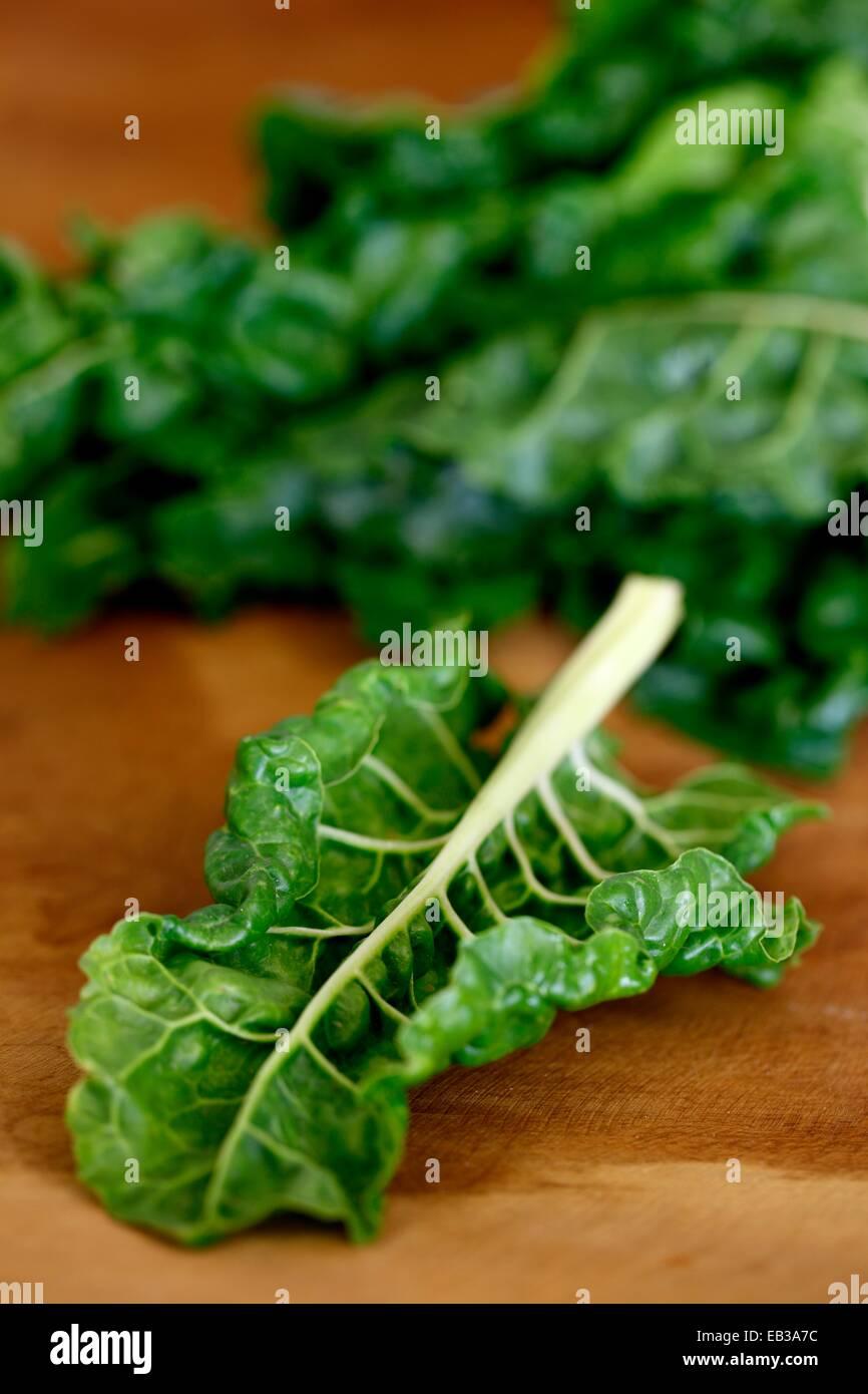 Nahaufnahme des Salatblatt Stockbild