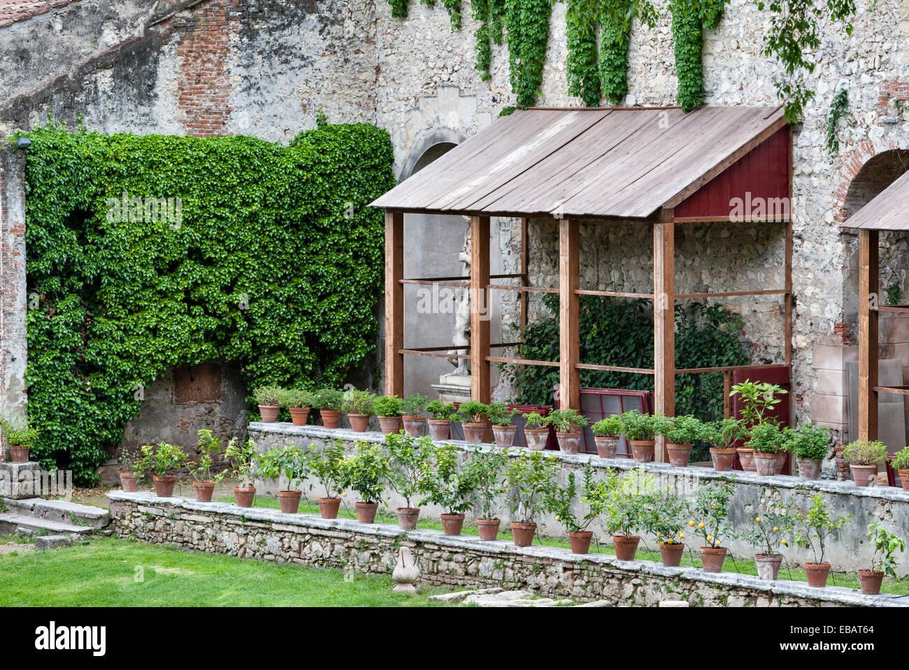 Die renaissance gärten der giardino giusti verona angebaute