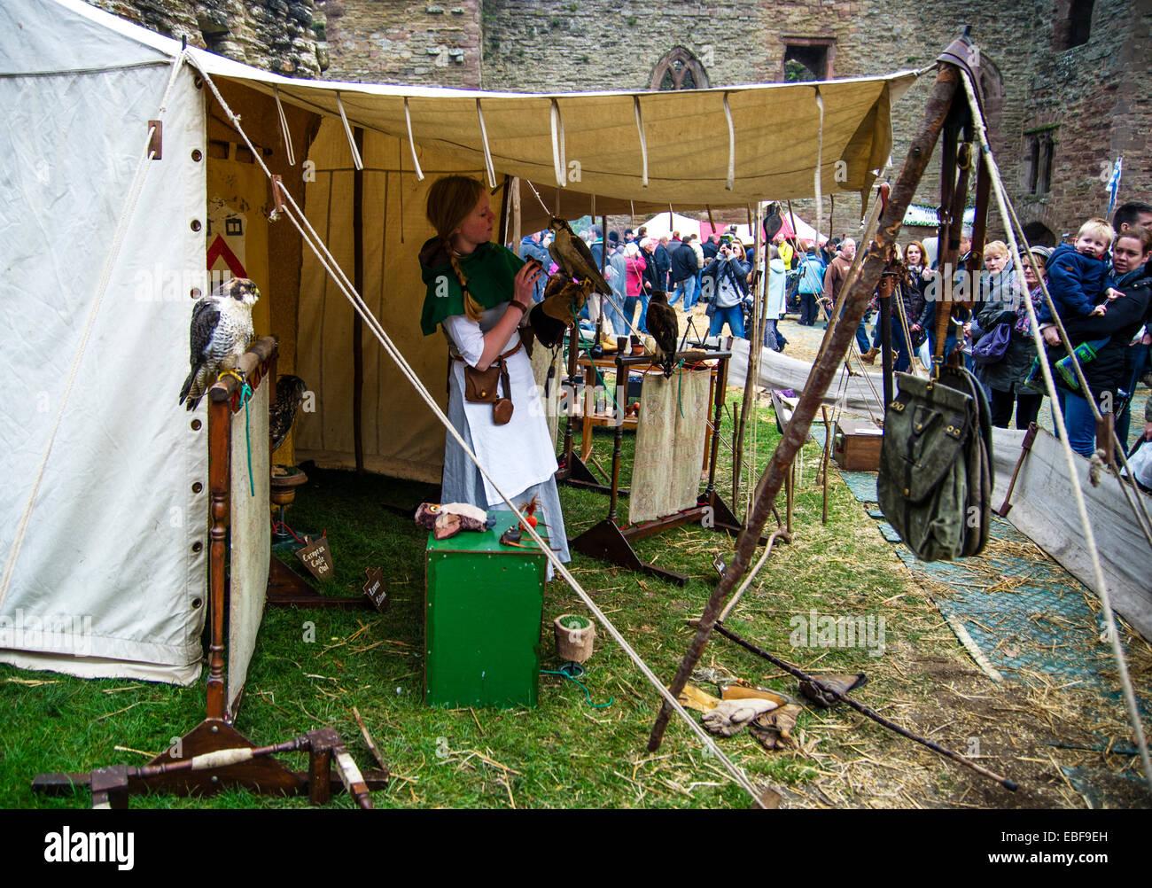 Ein junges Mädchen Falkner und eine Falknerei zeigt in Ludlow Castle Weihnachts-Essen und Handwerk Messe Shropshire Stockbild