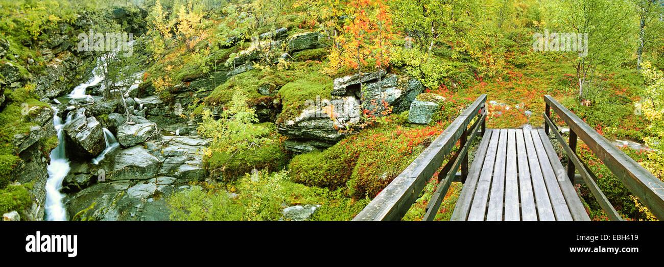 kleine Holzbrücke im Busch Herbstwald mit kleinen Baches, Schweden, Lappland, Stora Sjoefallets NP, Sep 02. Stockfoto